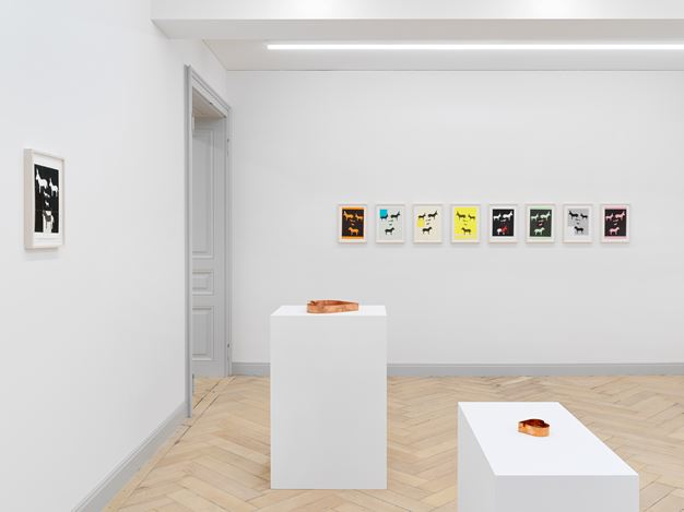 Installation view, Valentin Carron: Un Ami Simple, Galerie Eva Presenhuber, Rämistrasse, Zurich, 2020 Courtesy the artist and Galerie Eva Presenhuber, Zurich / New York Photo: Stefan Altenburger Photography, Zurich