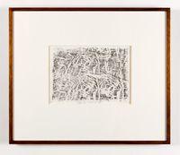 Beetle Umwelt XIII by John Wolseley contemporary artwork print