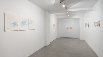 Contemporary art exhibition, Nicène Kossentini, Fugitive at Sabrina Amrani Gallery, Madrid