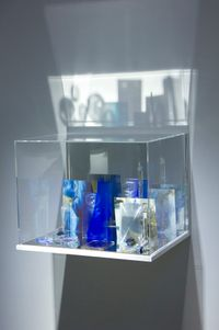 What Colour is the Sacred? (Blue) by Janet Laurence contemporary artwork sculpture