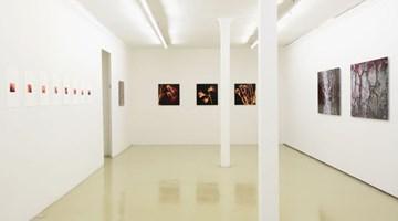 Contemporary art exhibition, Angelika Krinzinger, Im Detail at Galerie Krinzinger, Krinzinger Projekte, Vienna