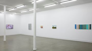 Contemporary art exhibition, Whitney Bedford, Petra Cortright, Kirsten Everberg, Judy Ledgerwood, Slippery Painting at Starkwhite, Auckland