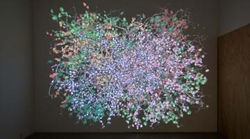 Contemporary art exhibition, Jennifer Steinkamp, Diaspore at Lehmann Maupin, Hong Kong