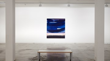 Contemporary art exhibition, Group Exhibition, Under Control at Two Rooms, Auckland