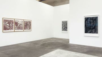 Contemporary art exhibition, Sam Harrison, inside out at Jonathan Smart Gallery, Christchurch, New Zealand