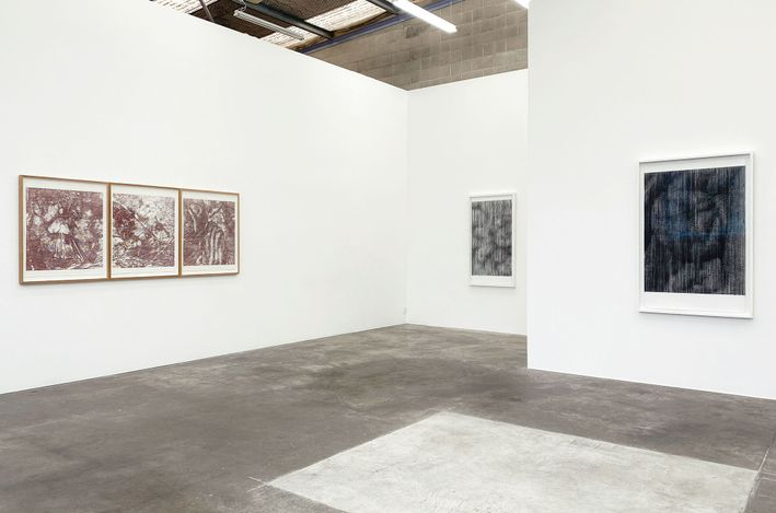 Exhibition view: Sam Harrison, inside out, Jonathan Smart Gallery, Christchurch (23 July–21 August 2021). Courtesy Jonathan Smart Gallery.