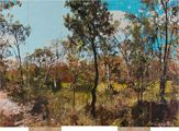 D.98. On The Wallaby Track by Gary Carsley contemporary artwork 2