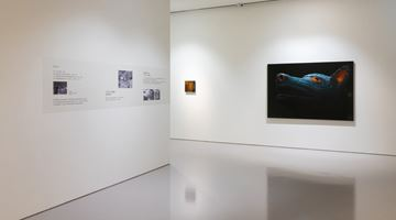 Contemporary art exhibition, Lin Yen Wei, Lin Yen Wei at Eslite Gallery, Taipei