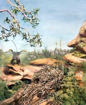 Lyrebird, Garigal National Park, Sydney region New South Wales by Anne Zahalka contemporary artwork