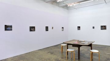 Contemporary art exhibition, Janice Nowinski, Recent Paintings at Thomas Erben Gallery, New York, USA