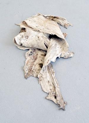 Elastic Debris (2) by Martin Maeller contemporary artwork