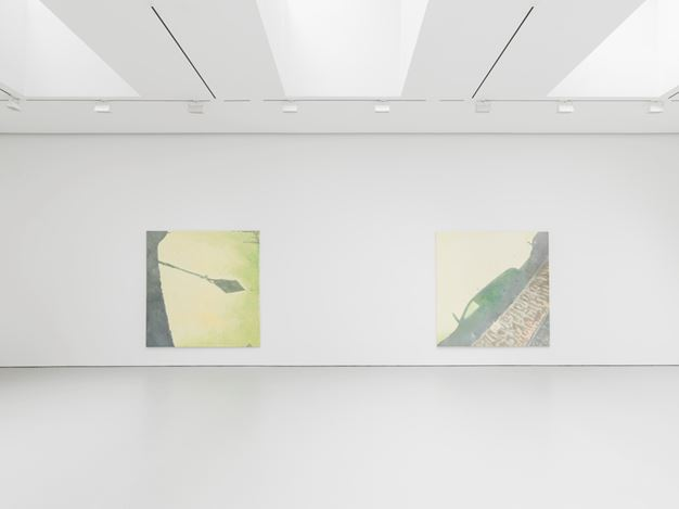 Exhibition view: Luc Tuymans, Le Mépris, David Zwirner, 19th Street, New York (5 May–25 June 2016). Courtesy David Zwirner, 19th Street, New York.