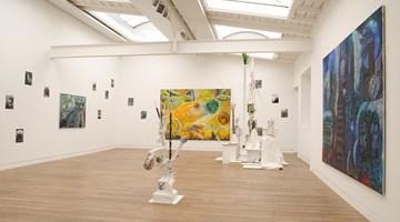 Contemporary art exhibition, Hartmut Neumann, Overgrown and Disappeared at Beck & Eggeling International Fine Art, Düsseldorf