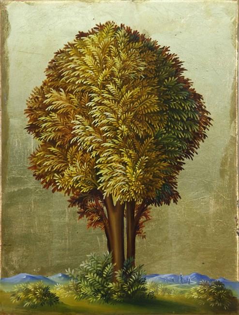 Portrait of a Tree by Peter Daverington contemporary artwork