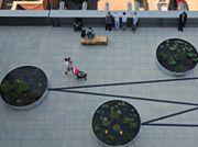 Wind turbines sustain an aquatic garden on a Whitney Museum terrace