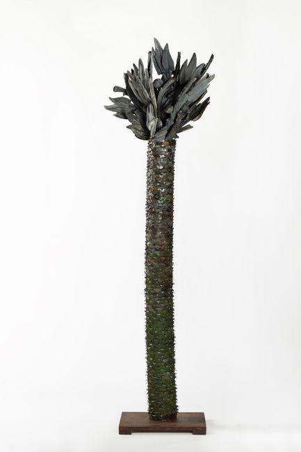 Dracaena Draco by Ion Bitzan contemporary artwork