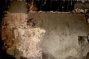 Untitled (Treme-Treme) by Kiluanji Kia Henda contemporary artwork