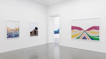 Contemporary art exhibition, Lionel Esteve, Chemical Landscape at Perrotin, Paris