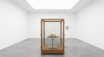 Contemporary art exhibition, Group Exhibition, Winterreise at Xavier Hufkens, St-Georges, Brussels