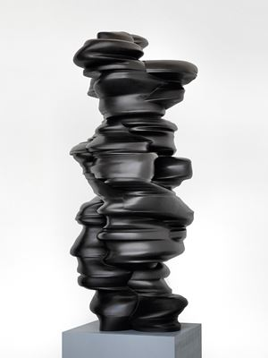 Different Points of View by Tony Cragg contemporary artwork