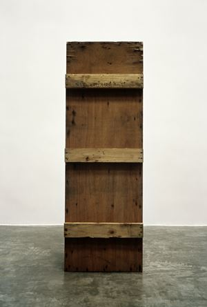 Wood Case by Feng Yan contemporary artwork