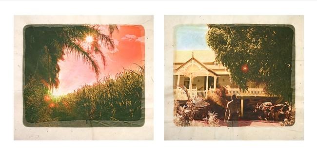 Plantation (Diptych No. 3) by Tracey Moffatt contemporary artwork
