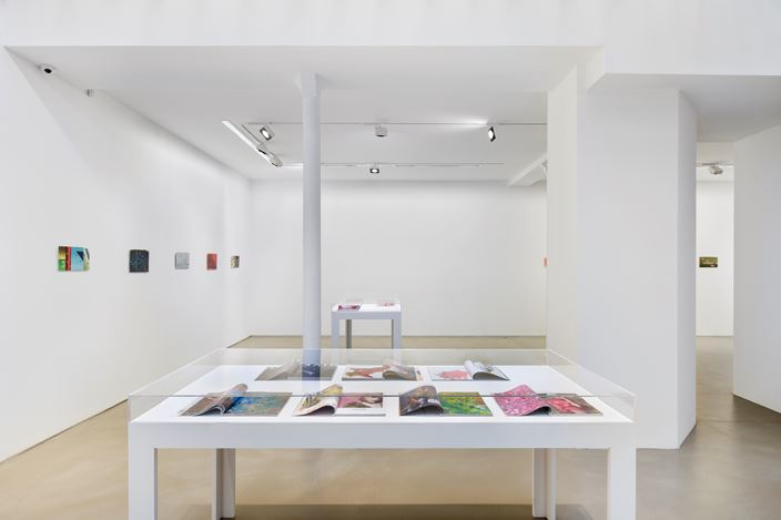 Exhibition view: Clément Rodzielski, Animes and magazines, paintings on paper, Galerie Chantal Crousel, Paris (7 March–23 May 2020). Courtesy the artist and Galerie Chantal Crousel, Paris. Photo: Martin Argyroglo.