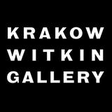 Krakow Witkin Gallery Advert