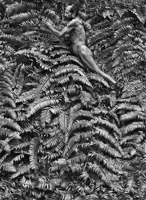 Yali man. West Papua. Indonesia. by Sebastião Salgado contemporary artwork