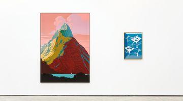 Contemporary art exhibition, Alex Dordoy, The Weather Channel at The Modern Institute, Osborne Street, United Kingdom
