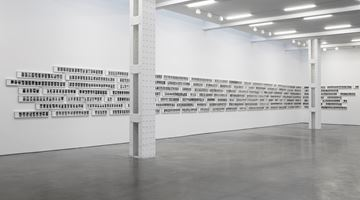 Contemporary art exhibition, Roy Colmer, Doors at Lisson Gallery, New York