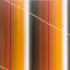 Filbert Family No.9 by Seoul Kim contemporary artwork