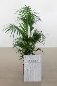 untitled 2020 (the ambrosias of evil) (flag, 1971) by Rirkrit Tiravanija contemporary artwork sculpture