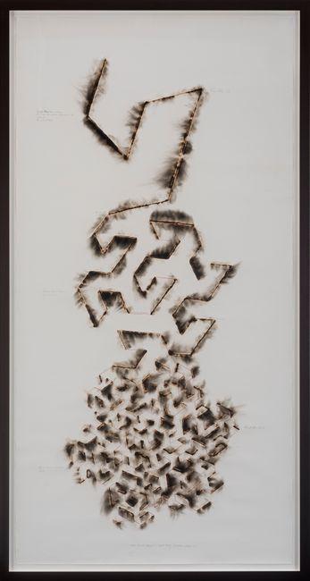 Wind Study (Gosper Curve) by Jitish Kallat contemporary artwork