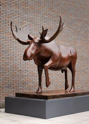 Canadian Moose 加拿大驼鹿 by Daniel Daviau contemporary artwork