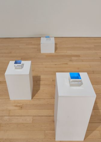 Exhibition View: Kristin McIver,Impressions, Jane Lombard Gallery, New York (February 20 - April 10, 2021). Courtesy of Jane Lombard Gallery. Photographs by Arturo Sanchez.