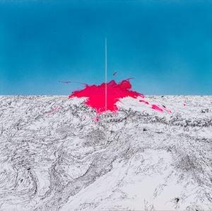 Rose of Goldbach by Zhu Rixin contemporary artwork