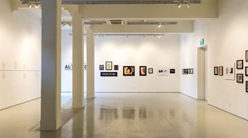 Contemporary art exhibition, Lynn Hershman Leeson, Alter Ego (Roberta Breitmore Series) at ShanghART, Singapore