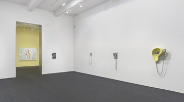 Contemporary art exhibition, Camille Henrot, Solo Exhibition at Metro Pictures, New York