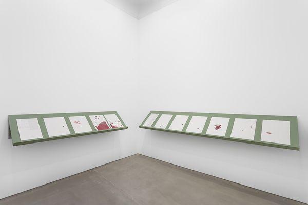 Lawrence Abu Hamdaninstallation view, Maureen Paley, London, 2020