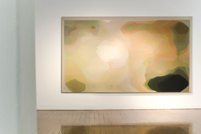 Exhibition view: John Young, Silent Transformations, Arc One Gallery (31 July–31 August 2019). Courtesy Arc One Gallery, Melbourne.