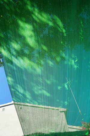 Borrando Verde, Benissa by Juan Uslé contemporary artwork