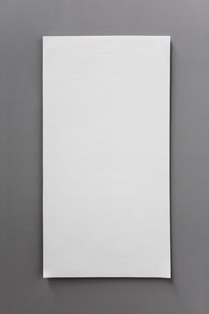 Blank Paper by Liu Jianhua contemporary artwork