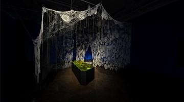 Contemporary art exhibition, Ruby Unkyung Hur, Botanimal Garden at Arario Gallery, Seoul