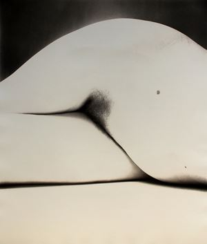 Nude 65, New York by Irving Penn contemporary artwork