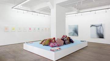 Contemporary art exhibition, Betty Tompkins, Betty Tompkins at rodolphe janssen, Brussels
