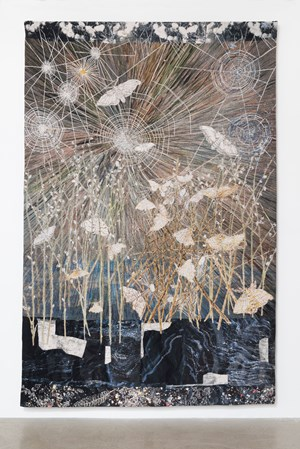 Spinners (Moths & spiders webs) by Kiki Smith contemporary artwork