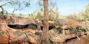 Platypus, Burragorang Valley, Macarthur Region of New South Wales by Anne Zahalka contemporary artwork