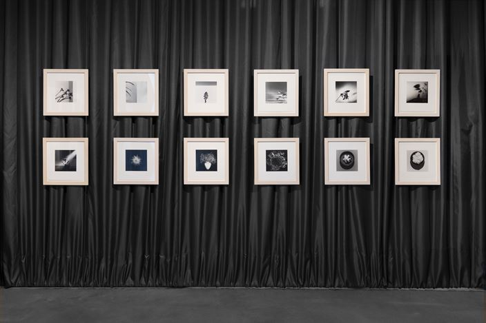 Exhibition view: Robert Mapplethorpe, X Y Z Portfolios, Galerie Thomas Schulte, Berlin (14 March–9 May 2020). Courtesy Galerie Thomas Schulte, Berlin. Photo: ©Stefan Haehnel.