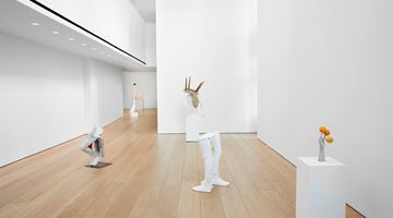 Contemporary art exhibition, Erwin Wurm, Yes Biological at Lehmann Maupin, 501 West 24th Street, New York